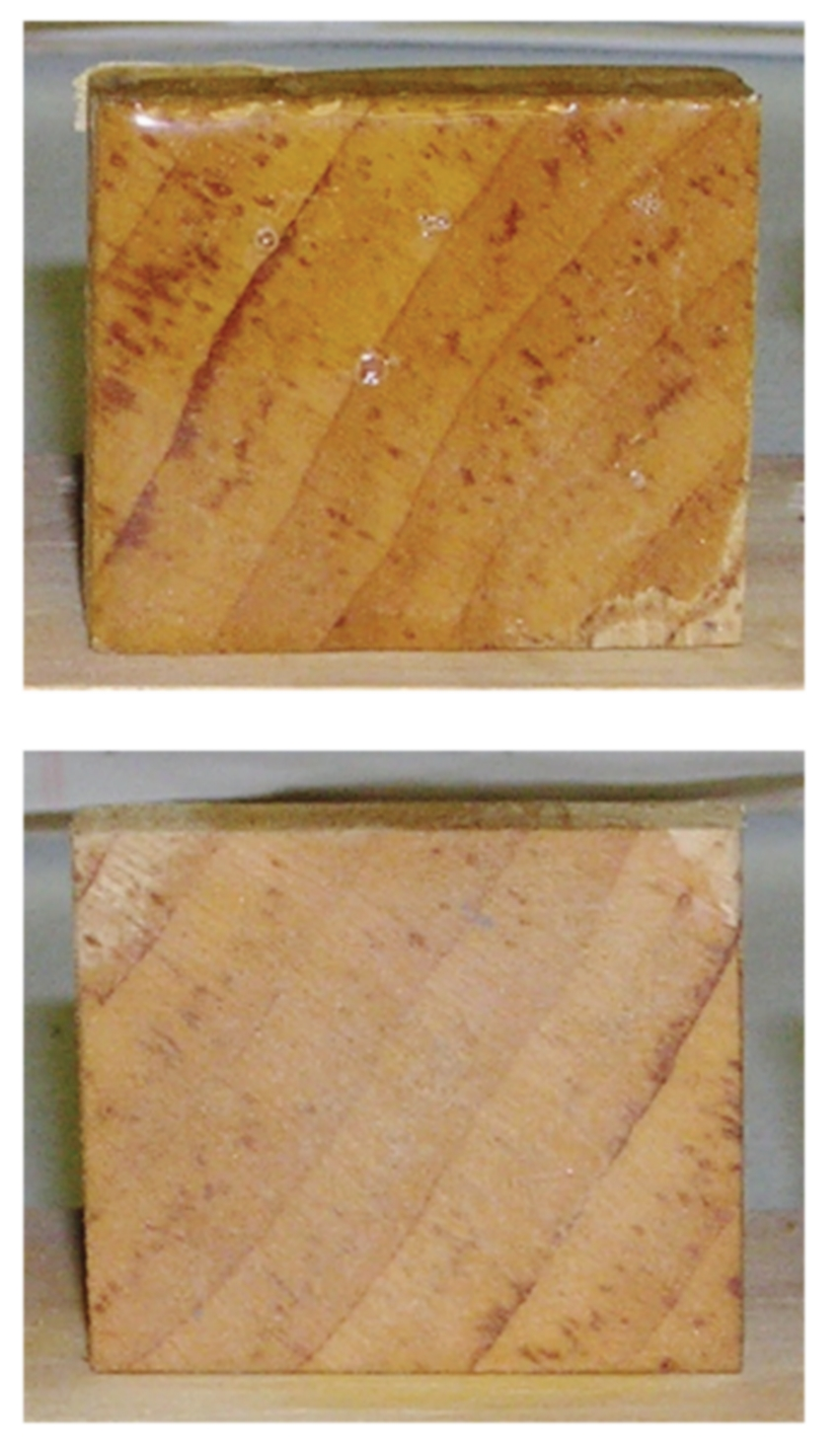 penetrating epoxy sample blocks